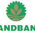 Land Bank opens credit window for palay farmers in South Cotabato