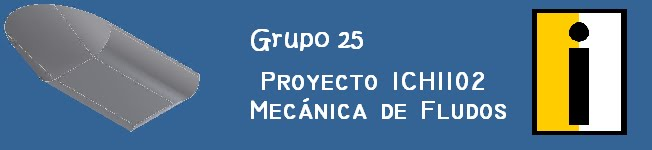 Grupo 25