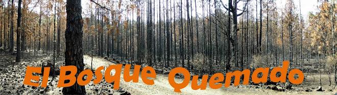 El bosque quemado