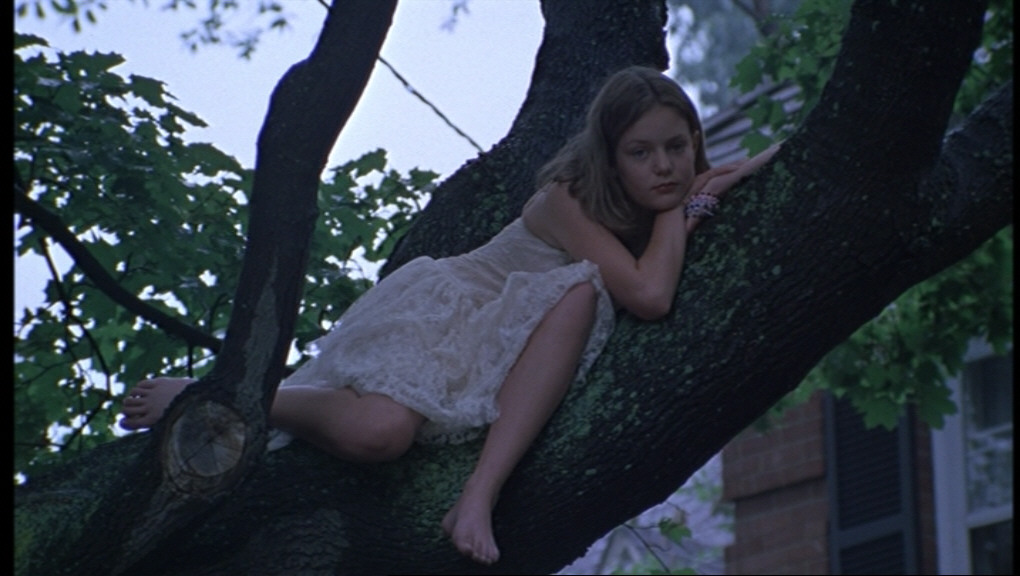 About the virgin suicides