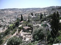 La Ciutat de David