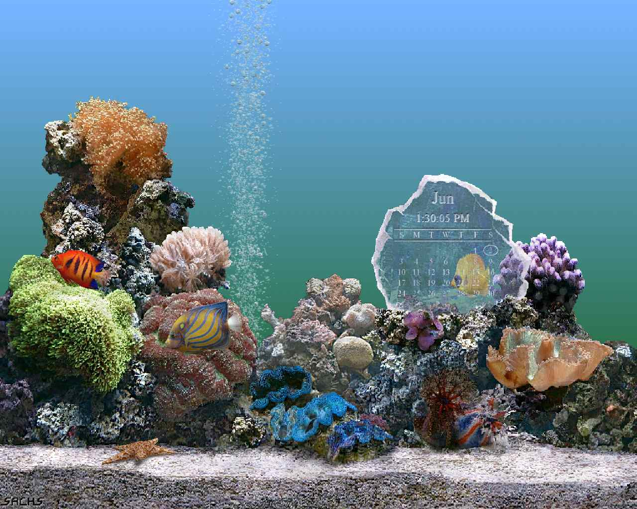 SereneScreen Marine Aquarium Time 2.6