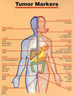 Νεοπλασματικοί και Καρκινικοί δείκτες Tumor-Markers
