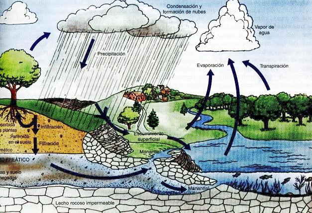 importancia del agua. Agencia Vasca del Agua) de
