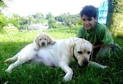 Daniel es un gran protector de sus animales