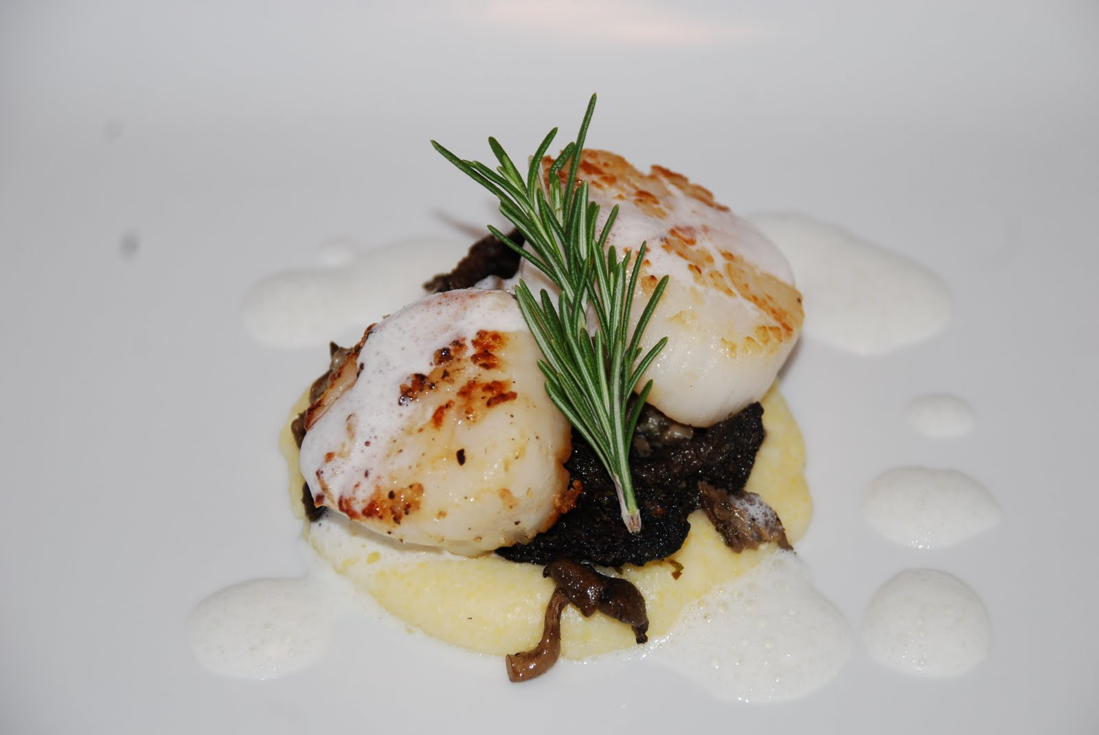 Seared+Scallops,+Wild+Mushrooms+%26+Soft+Polenta+with+Fennel+Foam.JPG