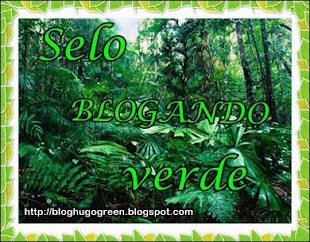 Presente do Blog Hugo Green
