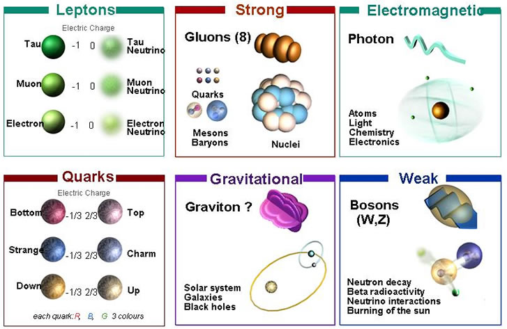 Astronomy: four fundamental forces
