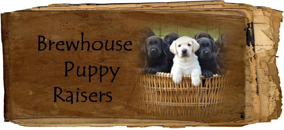 Brewhouse puppy raisers