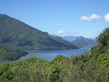 Marlborough Sounds NZ