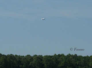 Airship over Currituck