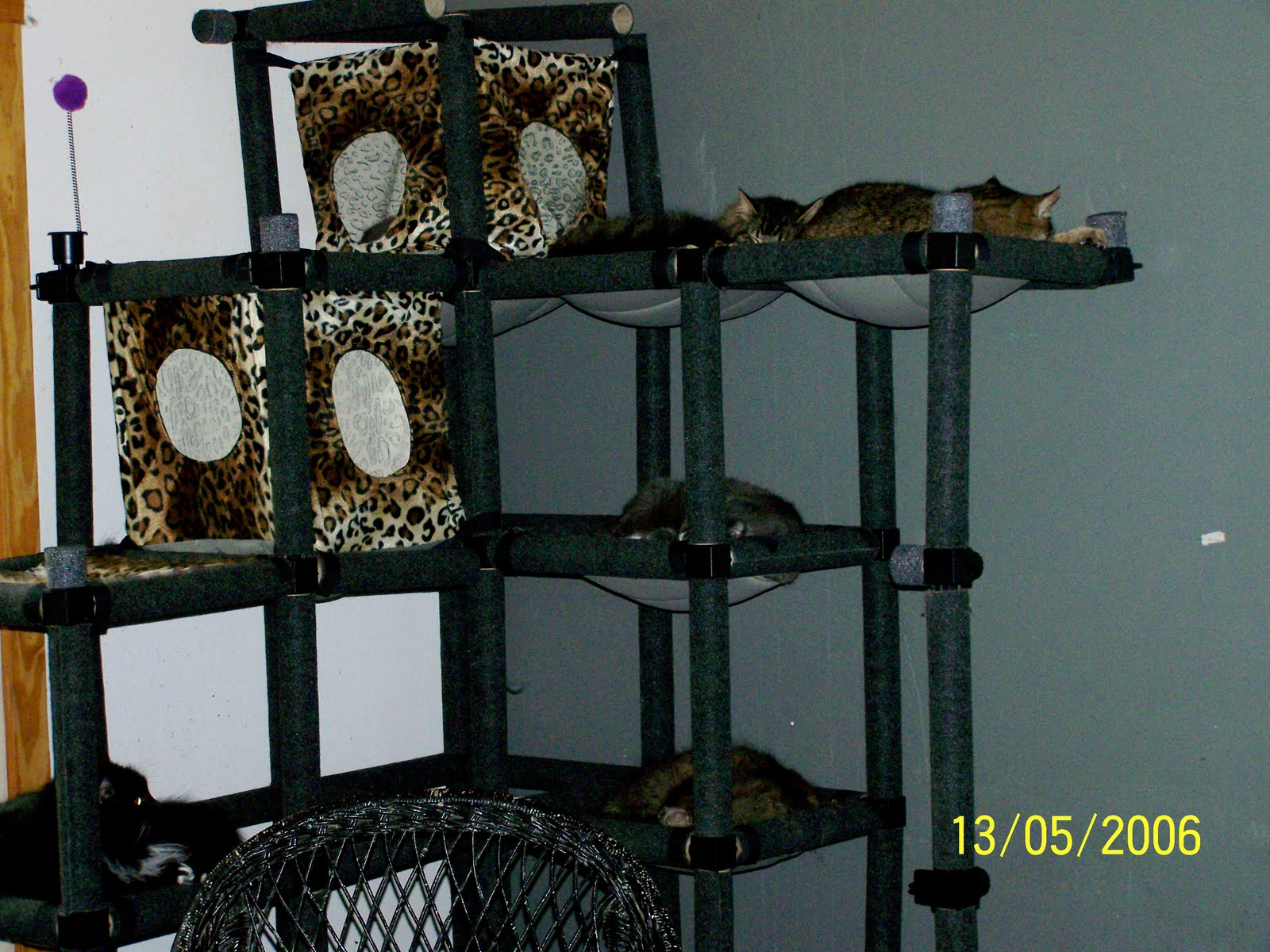 Cool Cat Furniture & Great Ideas For Cats Stairway To
