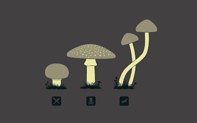 an illustration of various mushrooms and their uses.