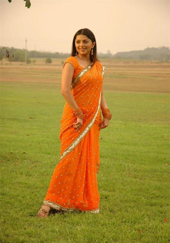 Indian Dress Sari Bhumika Chawla Sizzles In Saree