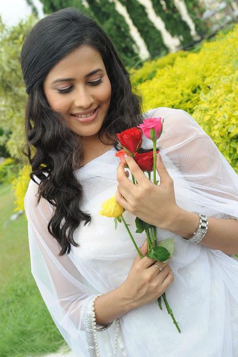panchi bora sills actress pics