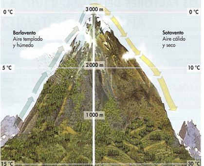 Geoperspectivas comentario de una cliserie o catena de for Pisos de vegetacion canarias
