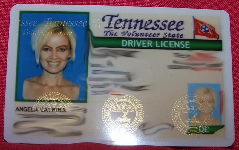 report lost drivers license tn