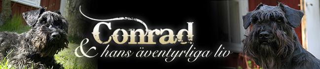 Conrads värld