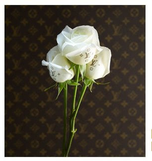 A Rinkya Blog: Louis Vuitton Monogrammed Roses for WHITE DAY!