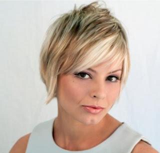 http://3.bp.blogspot.com/_30PRmkOl4ro/S4EElbmOplI/AAAAAAAAaJo/qZDlb2JSaYg/s400/short-layered-hairstyle-330x3161.jpg