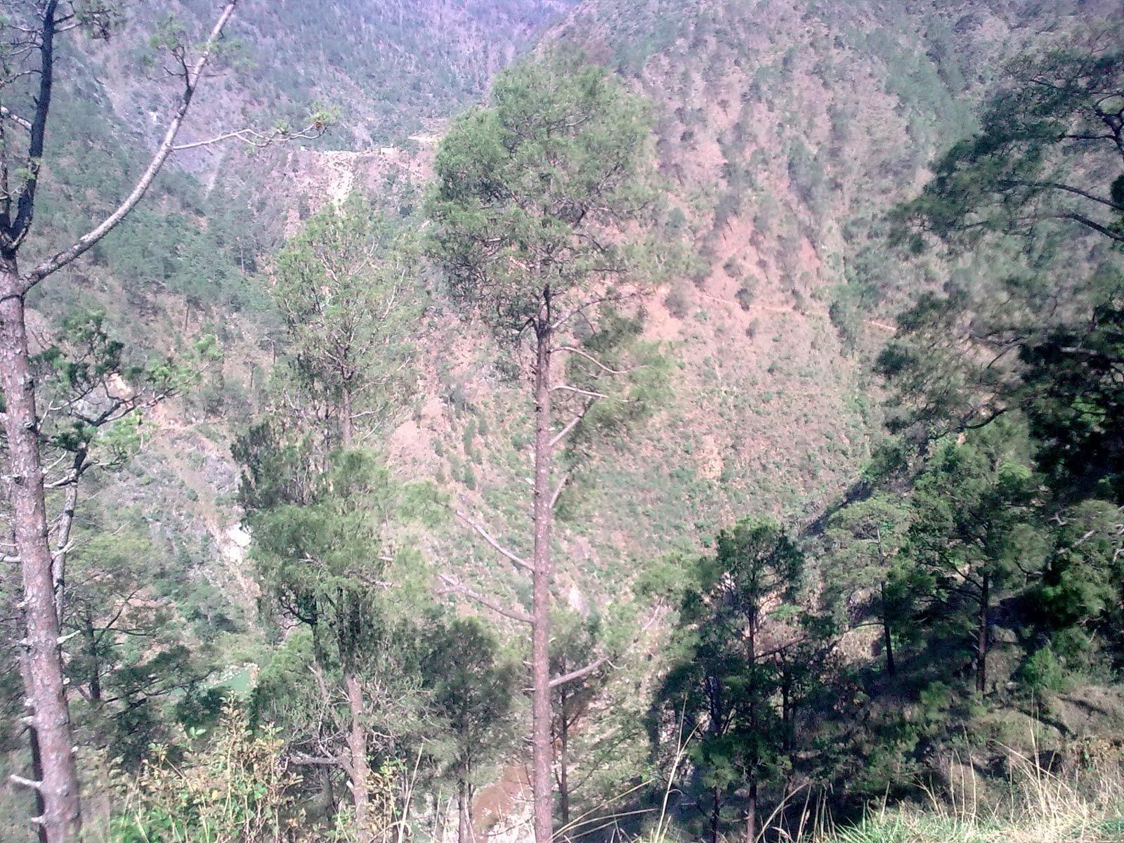 Pauri Garhwal India  City new picture : Garhwal Online Pauri Garhwal, Garhwal Region , Uttarakhand ,India ...
