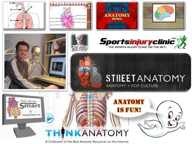 ZaidLearn: A Sizzling Collection of Anatomy Games & Resources!