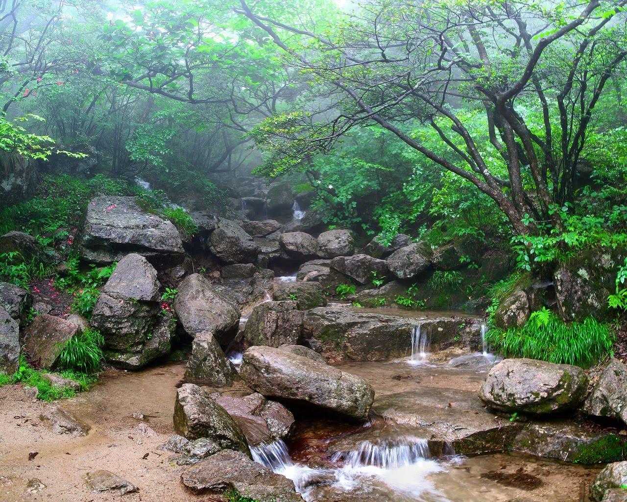 http://3.bp.blogspot.com/_34wqQuaxkgk/TLRYZtTyW_I/AAAAAAAAAJA/CkdddWSjCEc/s1600/utopia.jpg