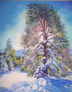 """Pine Tree in Winter"""