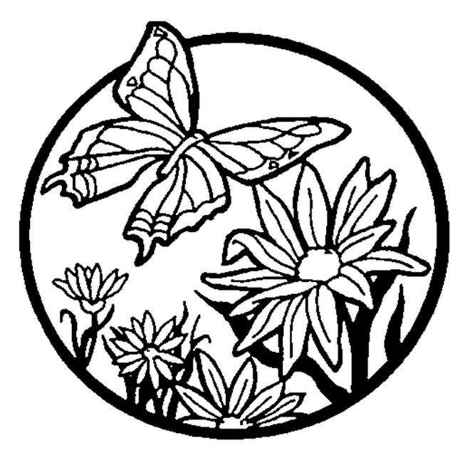 Butterfly Flowers Coloring Pages title=