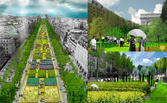 Nature Capitale : un jardin extraordinaire aux Champs Elysées