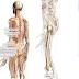 Google Body Browser : anatomie en 3D