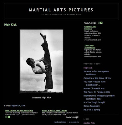 martial arts pictures