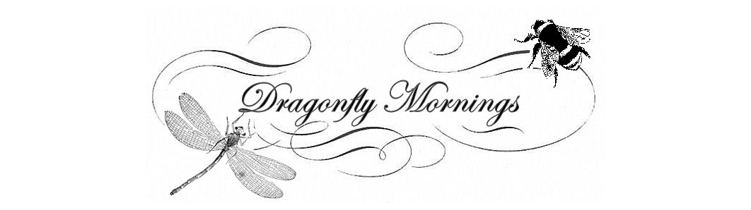 Dragonfly Mornings