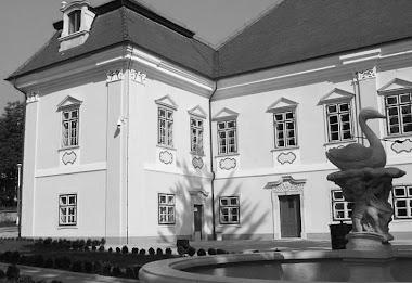 Deva - muzeul Magna Curia