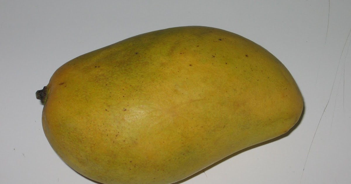 Vert avocat comment couper une mangue en d s - Couper morceau mp3 en ligne ...