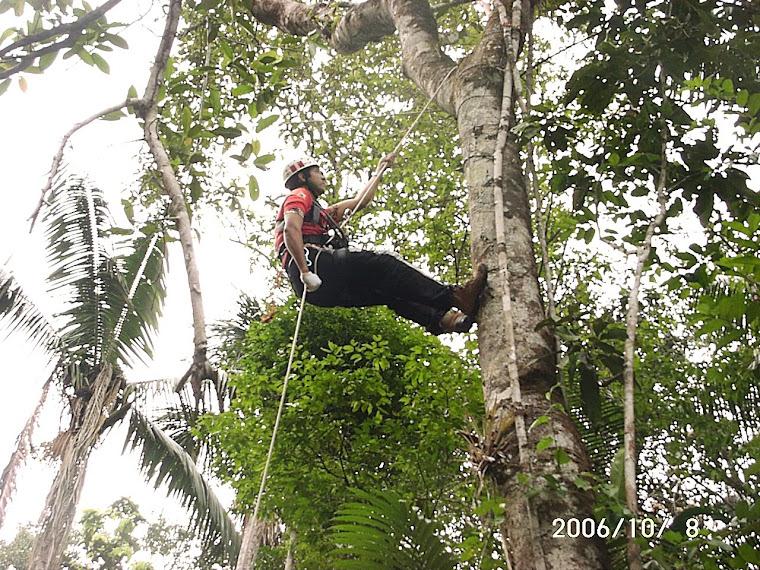 Rapel na Amazônia