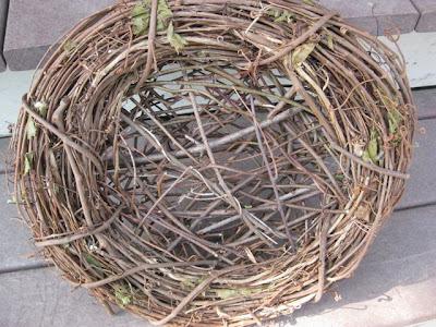 how do birds know how to build a nest