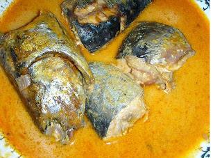 Ikan Tongkol - Satu Catatan Perjalanan