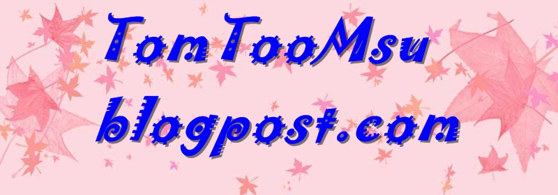 TomToomsu