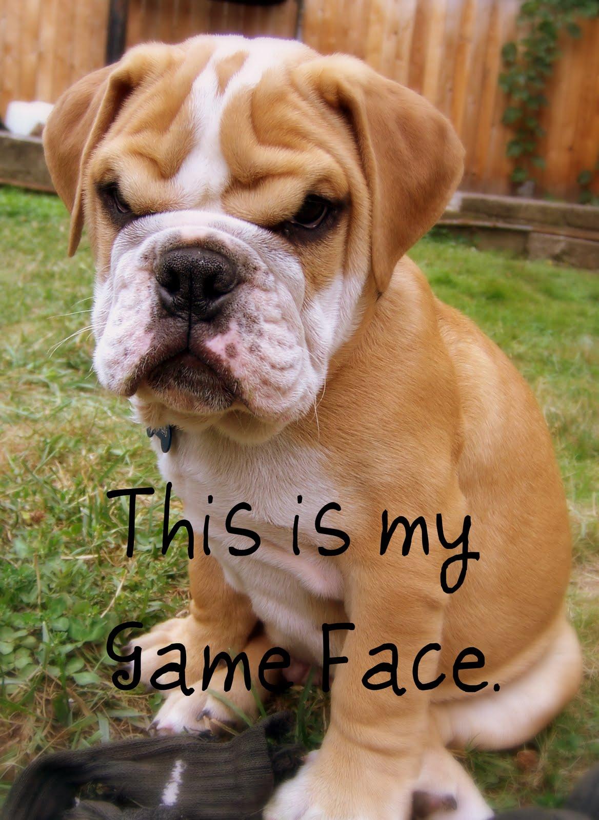 Game%2Bface.jpg