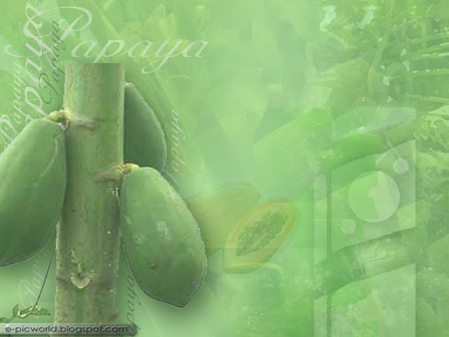 papaya fruit wallpaper