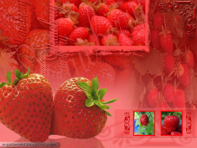strawberry fruit wallpaper