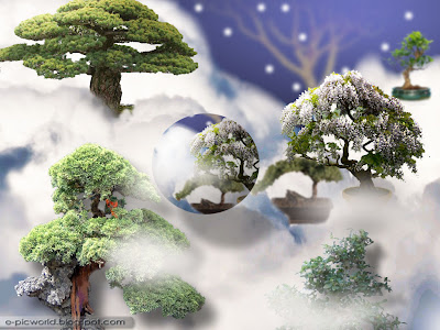 bonsai fantasy garden wallpaper 1