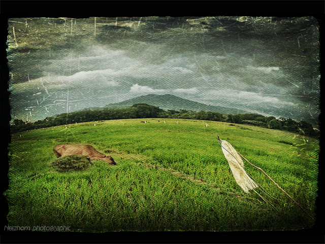 Textured Photos photo manipulation picture