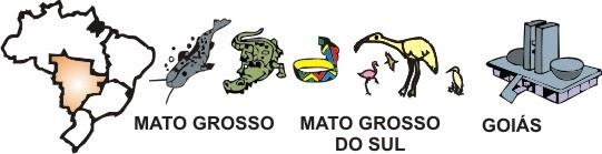 Adesivo De Parede Tijolo Branco ~ De lá pra cá REGIÃO CENTRO OESTE CULTURA POPULAR
