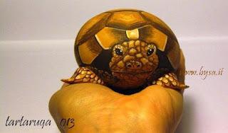Ritratti di animali bysa tartarughe terrestri for Sassi per tartarughe