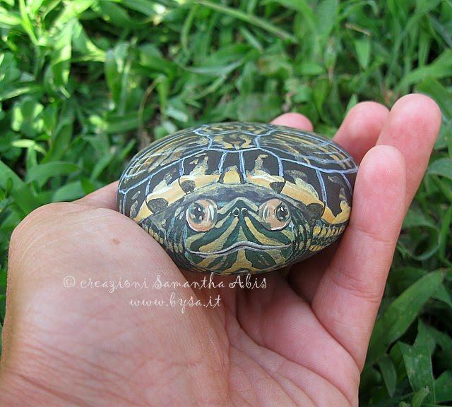 Ritratti di animali bysa tartarughe terrestri e d 39 acqua for Sassi per tartarughe