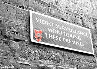 video surveillance monster