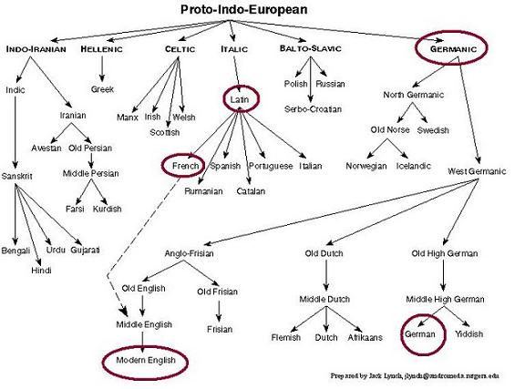 Hypotheses by lilly and dory the first indo europeans from lilly historical common language known as proto indo european heres a diagram posted by dory in one of our earlier posts click for the post and a more ccuart Choice Image