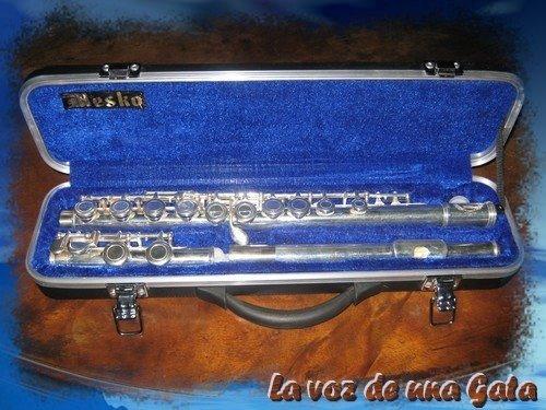 mi primera flauta traversa^^